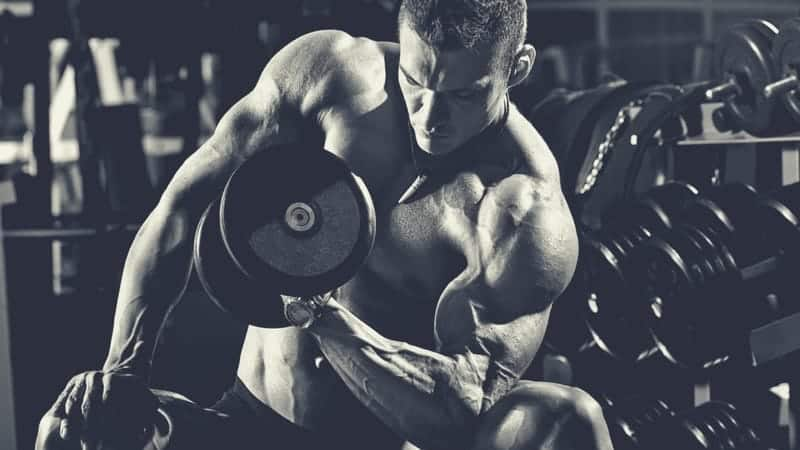 Build Bigger Arms: Gain Mass In Biceps & Triceps