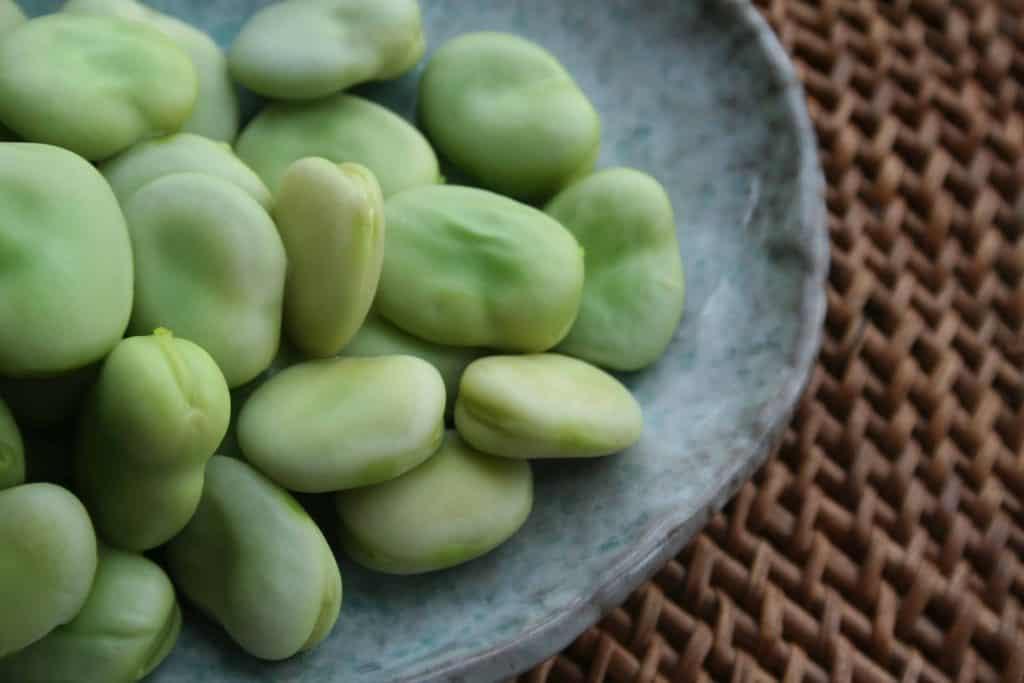 Fava Beans Help Increase Growth Hormone