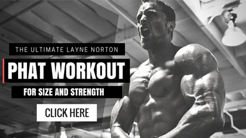 Layne Norton PHAT Workout