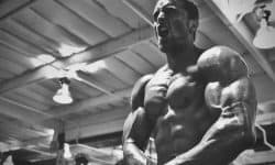 Layne Norton PHAT Workout Program