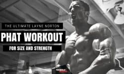 Layne Norton PHAT Workout Program - Anabolic Bodies™