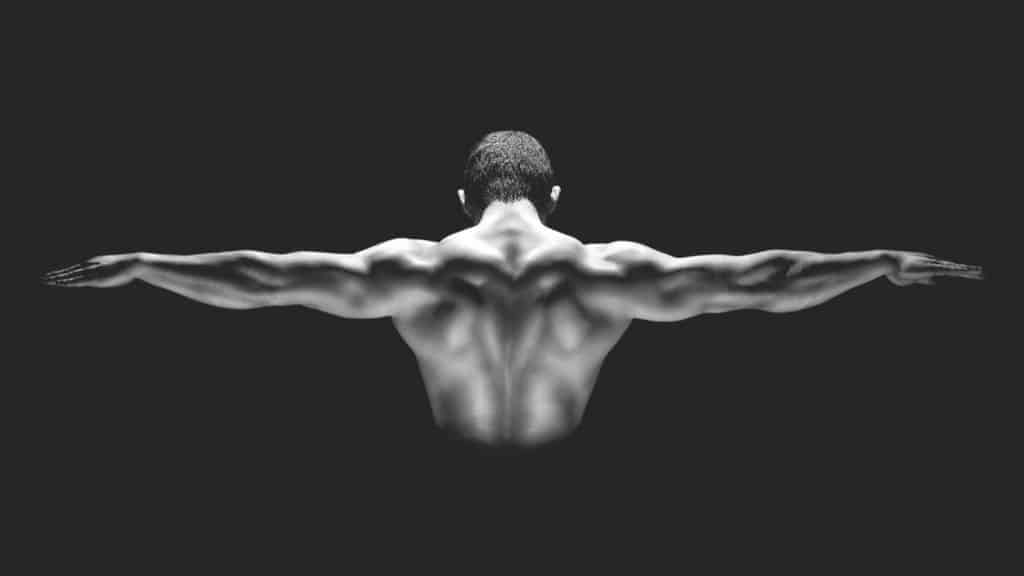 Muscle balance and symmetry. Rear view of healthy muscular man with his arms stretched out.