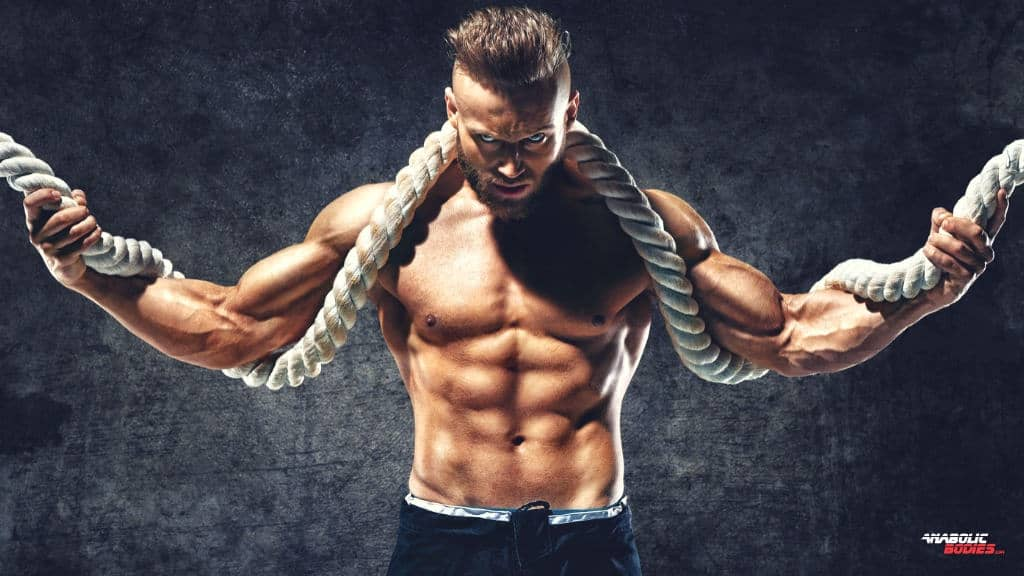 Testosterone Supplements Guide And Key Ingredient Of Best Test Boosters