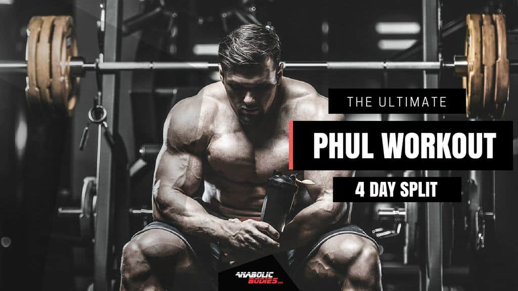 The Ultimate Power Hypertrophy Upper Lower (P H U L ) Workout