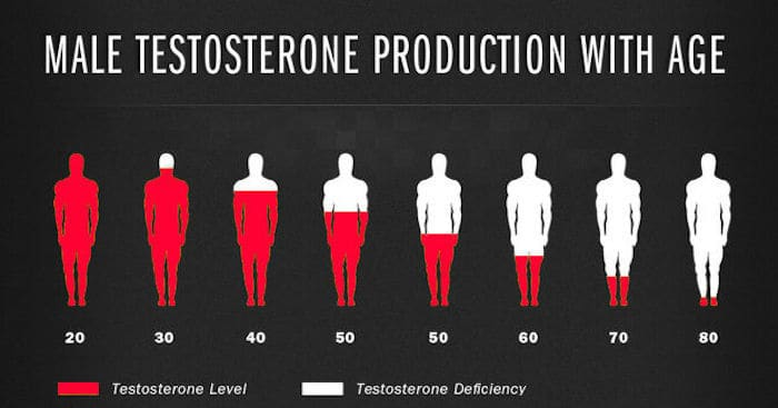 Anabolic Bodies - male testosterone levels production with age