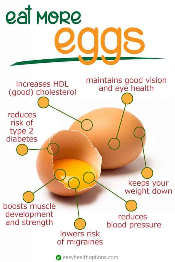 Eat Eggs To Cover Your Cholesterol Needs