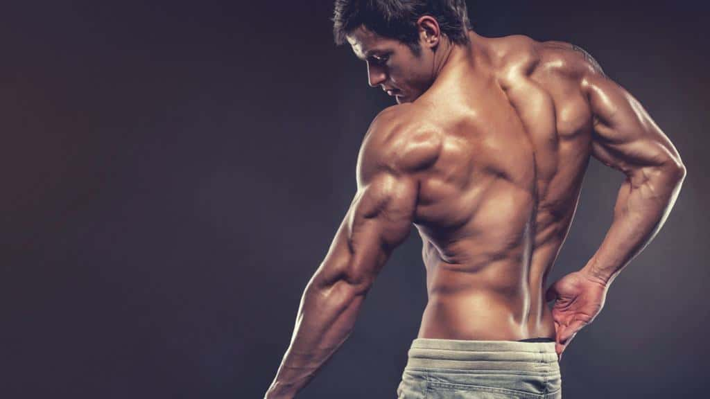 6 Exercises You Need To Train All Three Triceps Heads (Proven Tips)