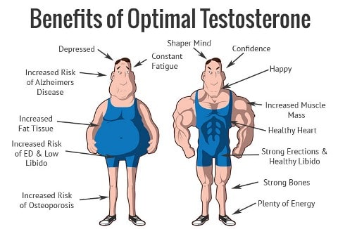 Benefits of Optimal Testosterone Levels