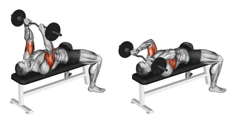 The Skull Crusher for Your Triceps
