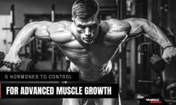 Best muscle building hormones - Anabolic Bodies™