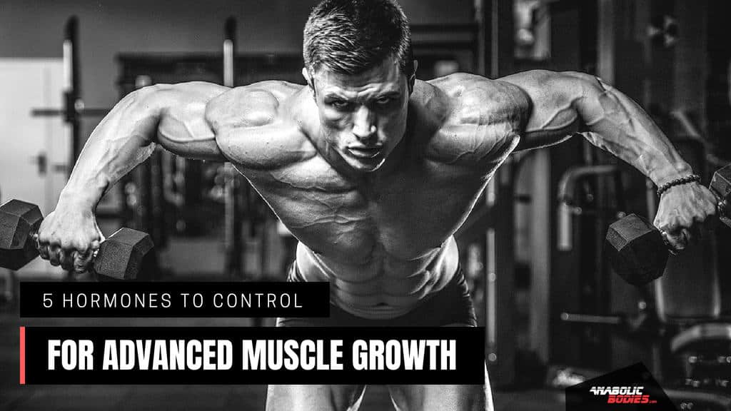 Best muscle building hormones - Anabolic Bodies™