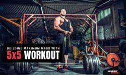 Building mass with Anabolic Bodies 5×5 workout routine