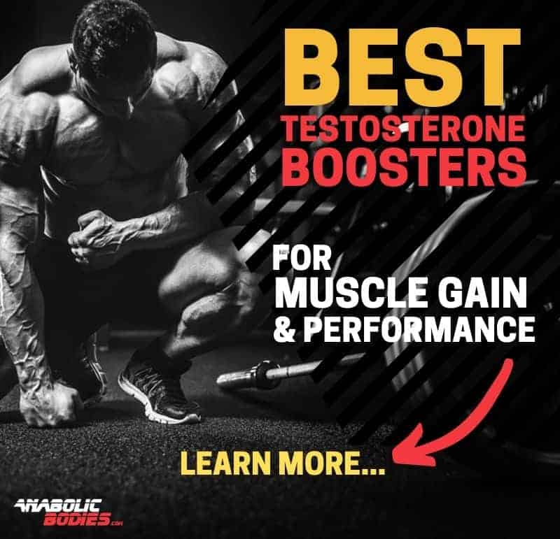 Best Testosterone Boosters For Muscle Gain And Performance