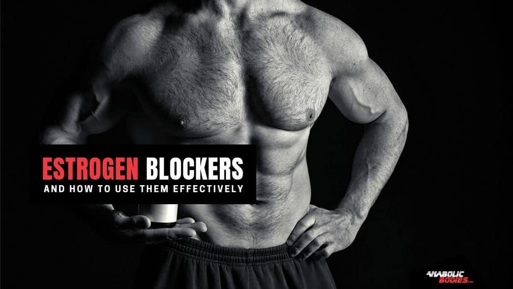 Estrogen Blocker Supplements For Men